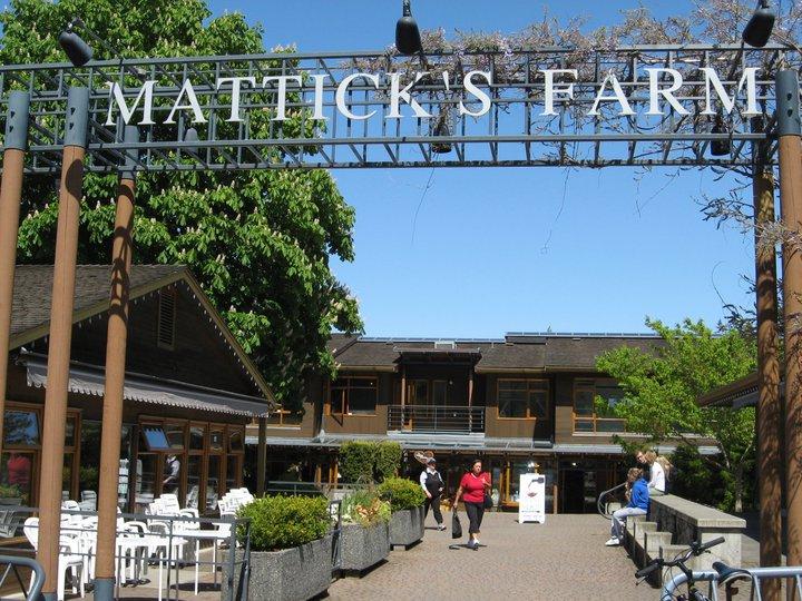 Mattick's Farm: A unique Vancouver Island Shopping Experience
